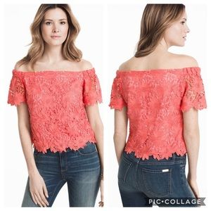 WHBM lace crop top